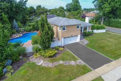 Massapequa Single Family Home For Sale: 83 Hampton Blvd