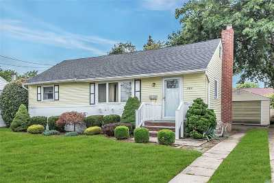 Bethpage Single Family Home For Sale: 205 N 5th St