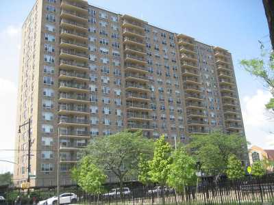 Flushing Condo/Townhouse For Sale: 41-40 Union St #11J