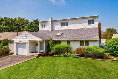 Massapequa Single Family Home For Sale: 384 Harrison Ave