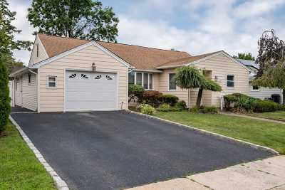 Wantagh Single Family Home For Sale: 1240 Campbell Rd