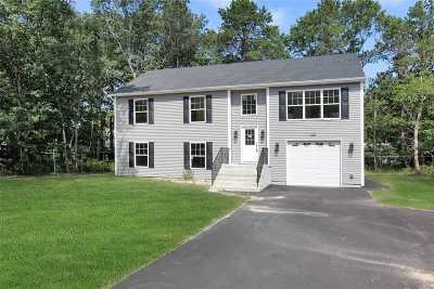 Ridge Single Family Home For Sale: 119 Middle Country Rd