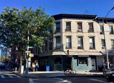 Brooklyn Rental For Rent: 366 Metropolitan Ave #3
