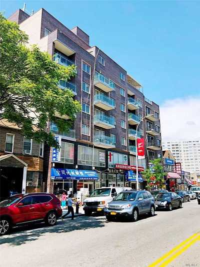 Flushing Condo/Townhouse For Sale: 41-42 College Point Blvd #4D