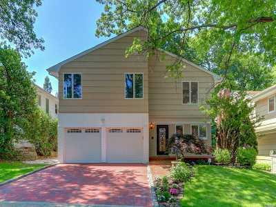 Great Neck Single Family Home For Sale: 8 Meryl Ln
