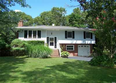 Smithtown Single Family Home For Sale: 43 Holly Dr