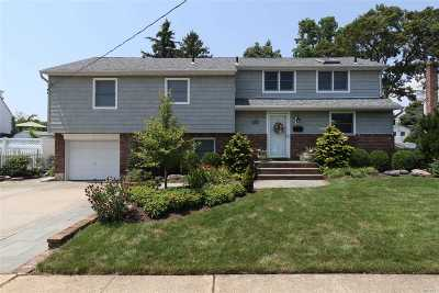 Massapequa Single Family Home For Sale: 72 Massapequa Ave