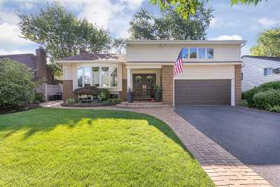 Plainview Single Family Home For Sale: 32 Netto Ln