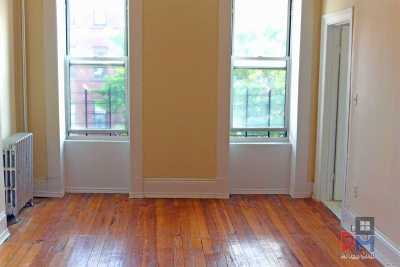 Brooklyn Rental For Rent: 781 Macdonough St