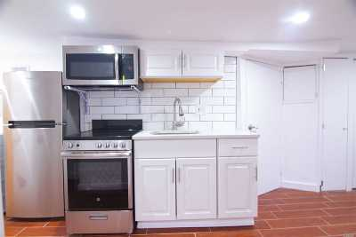 Brooklyn Rental For Rent: 199 Atkins Ave