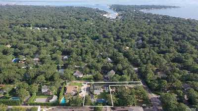 Hampton Bays Multi Family Home For Sale: 101 Springville Rd