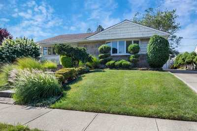 Bethpage Single Family Home For Sale: 21 Dennis Ln