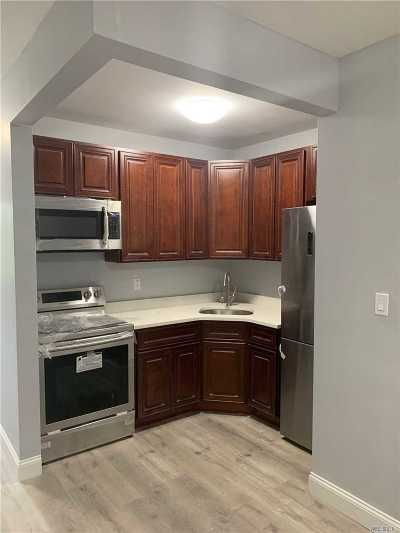 Brooklyn Rental For Rent: 1421 Dekalb Ave #1L