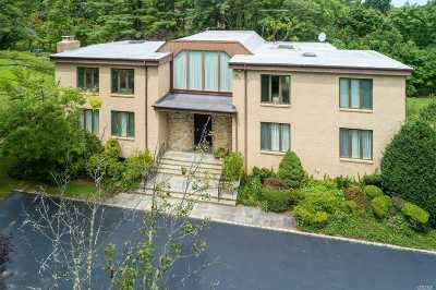 Great Neck Single Family Home For Sale: 420 E Shore Rd