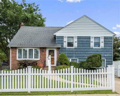 Levittown Single Family Home For Sale: 135 Elm Pl