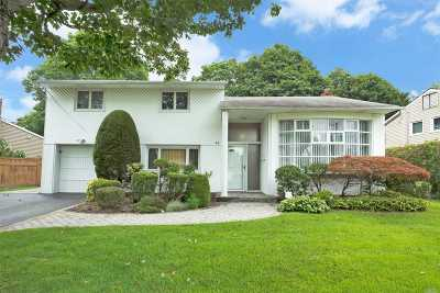 Plainview Single Family Home For Sale: 41 Phipps Ln