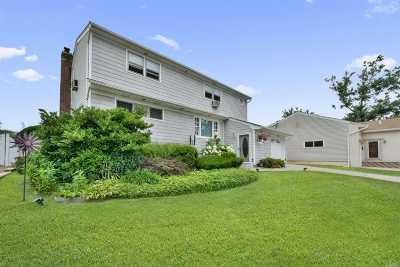 Valley Stream Single Family Home For Sale: 86 Riverdale Rd