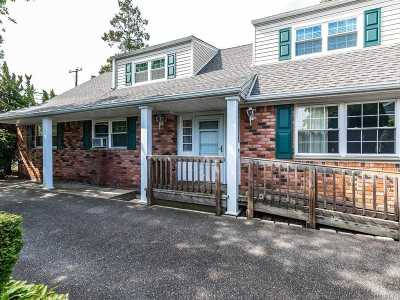 Lynbrook Single Family Home For Sale: 209 Union Ave