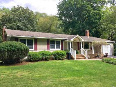 Smithtown Single Family Home For Sale: 391 Landing Ave