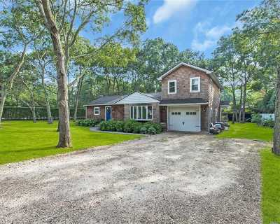 Hampton Bays Single Family Home For Sale: 51 Homewood Dr
