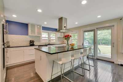 Smithtown Single Family Home For Sale: 252 Lilac Ln