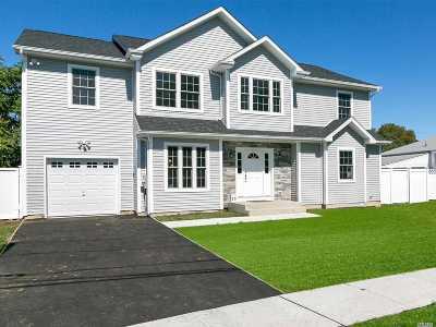 Farmingdale Single Family Home For Sale: 25 Henry St