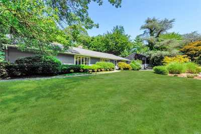 Roslyn Single Family Home For Sale: 100 Mimosa Dr