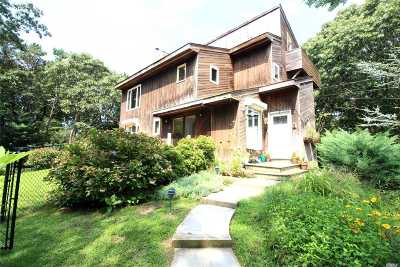 Southampton Single Family Home For Sale: 49 Peconic Rd