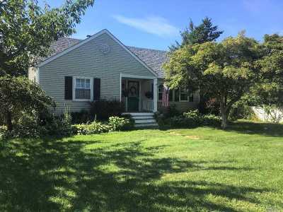 Patchogue Single Family Home For Sale: 14 Rosalie Pl