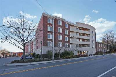 Carle Place, Westbury Condo/Townhouse For Sale: 242 Maple Ave #400 #400
