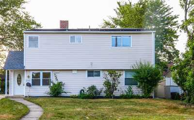 Levittown Single Family Home For Sale: 234 Wantagh Ave