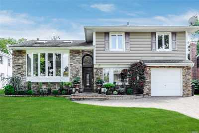 Williston Park Single Family Home For Sale: 228 Lafayette St