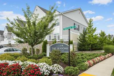 Seaford Condo/Townhouse For Sale: 48 Spring Dr