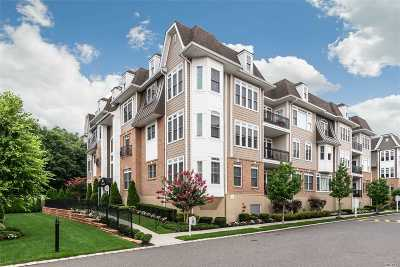 Carle Place, Westbury Condo/Townhouse For Sale: 67 Shady Ln #36304