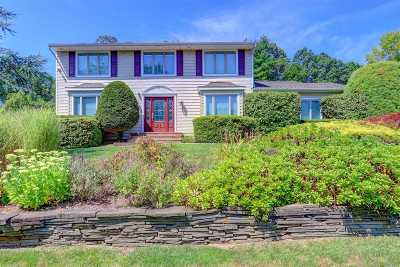 Dix Hills Single Family Home For Sale: 29 Stonehurst Ln