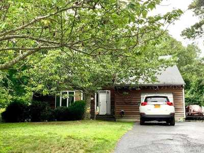 Hampton Bays Single Family Home For Sale: 17 Ginny Ln