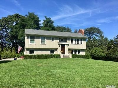 Westhampton Single Family Home For Sale: 21 Raynor Dr