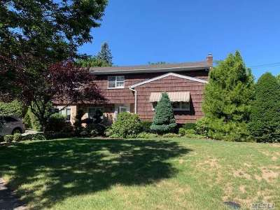 Jericho Single Family Home For Sale: 17 S Fern Dr