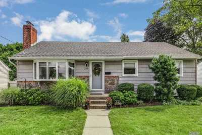 Bethpage Single Family Home For Sale: 250 N 7th St