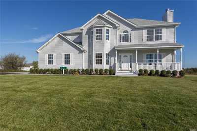 Centereach Single Family Home For Sale: Tbb Manhattan Ave