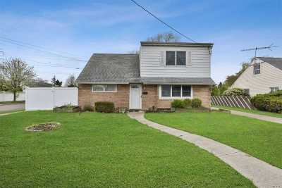 Bethpage Single Family Home For Sale: 28 Park Ln