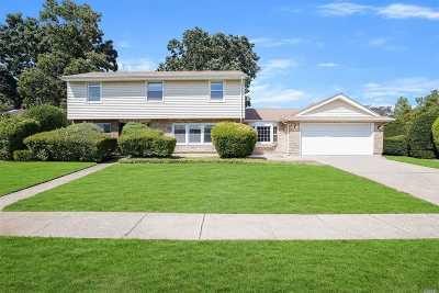 N. Massapequa Single Family Home For Sale: 197 N Atlanta Ave
