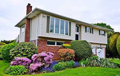 Plainview Single Family Home For Sale: 33 Richard Ct