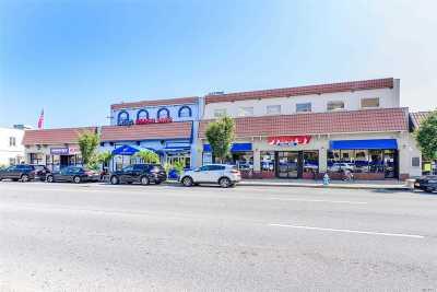 Island Park, Long Beach, Lynbrook, Oceanside, Rockville Centre Commercial For Sale: 220-226 W Park Ave