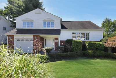 Syosset Single Family Home For Sale: 48 Convent Rd