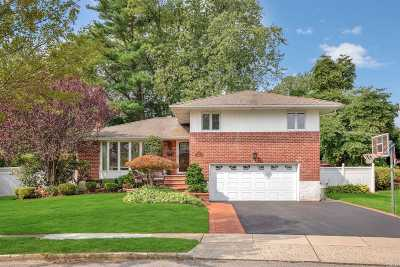 Plainview Single Family Home For Sale: 1 Radnor Rd