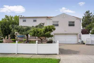 Plainview Single Family Home For Sale: 1 Thorpe Ln