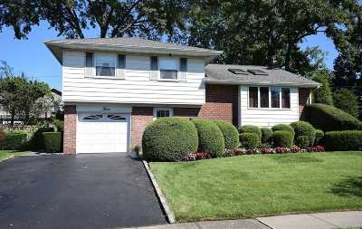 Plainview Single Family Home For Sale: 3 Fordham Dr