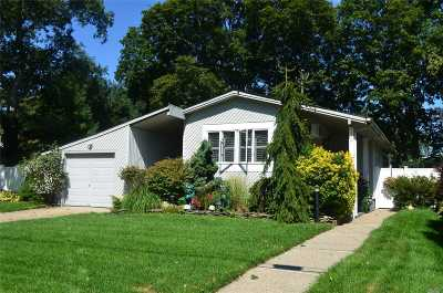 Selden Single Family Home For Sale: 127 Days Ave