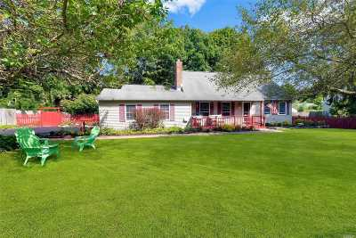 Miller Place Single Family Home For Sale: 321 Harrison Ave
